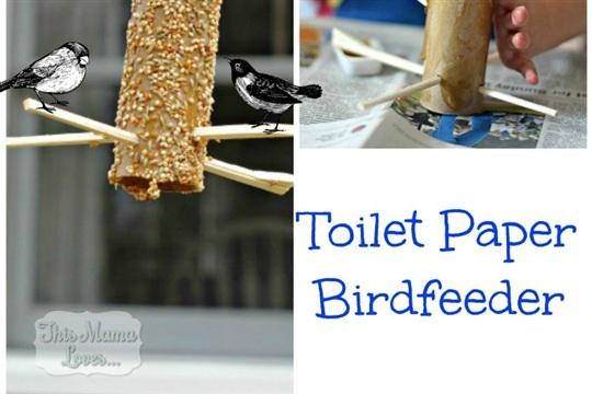Toilet Paper Birdfeeder