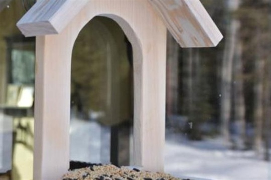 Make Your Garden An Avian Paradise With DIY Birdfeeders Page 2 of 2