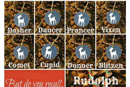 Set of Reindeer Ornaments