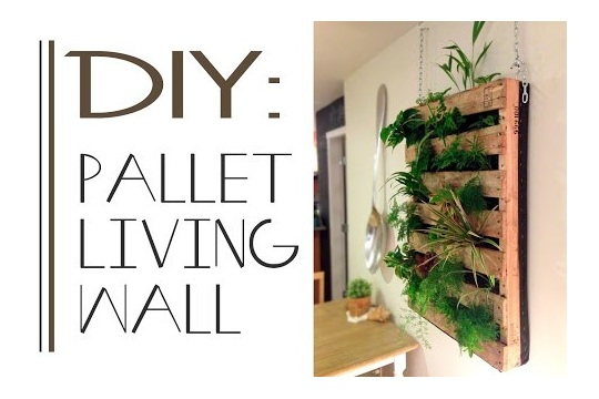 The Brew DIY Pallet Living Wall