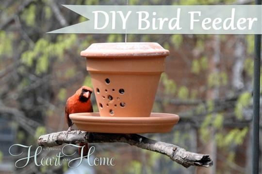 DIY Bird Feeder From A Flower Pot!