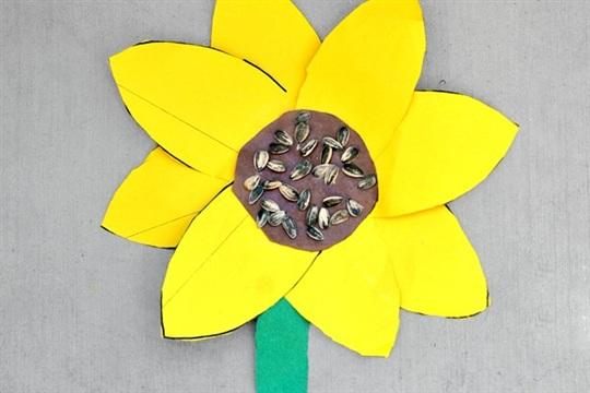 Sunflower Craft in 1st Grade