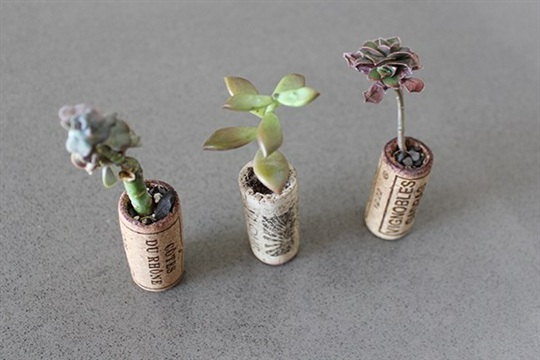 DIY How to Make Adorable Recycled Wine Cork Planters for Under $10