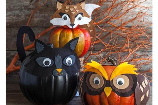 Felt Costumes For Your Halloween Pumpkins