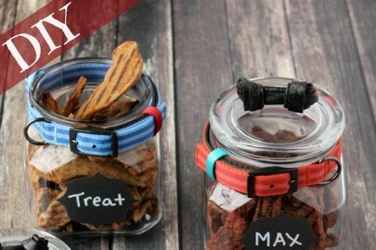 Easy DIY Dog Treat Jar That Is Modern